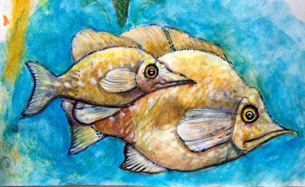 Watercolor Fish Painting Exercise_Jan_16_2013